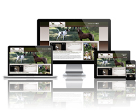 Lincoln Legacy Farms - Responsive Website