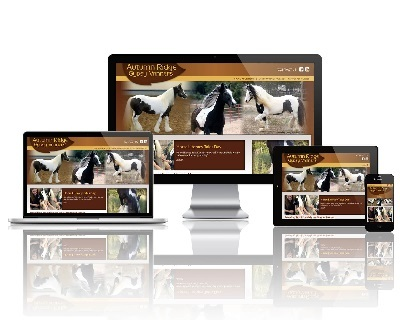 Autumn Ridge Gypsy Vanners - Responsive Website